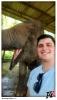 Elephant-Selfy